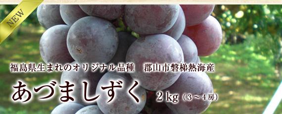 【期間限定】福島県生まれのぶどう・オリジナル品種「あづましずく」2�(3〜4房)贈答用にもお勧め