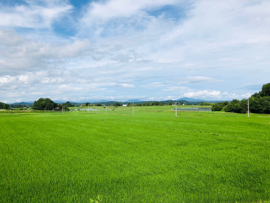 福島県中通り、100年以上続く米生産農家からお届けします